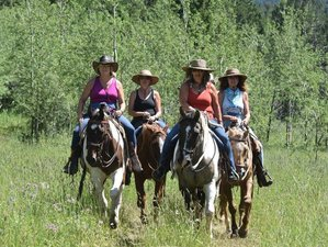 3 Day Pryor Mountain Horse Riding Holiday in Montana