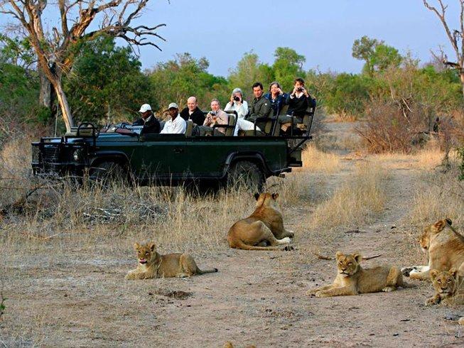 4 Days Queen Elizabeth and Kibale National Park Safari in Uganda