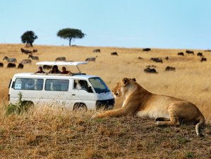 3 Days Budget Safari in Botswana