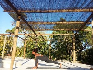 7 jours en stage de yoga et surf à Columbeira, Portugal