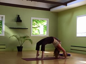 8 Days Tantra Yoga Retreat in India