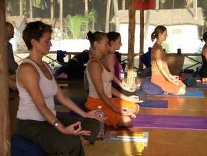 8 Day Tribe's 50-Hour Yoga Teacher Training Continued Personal Development in Tangalle