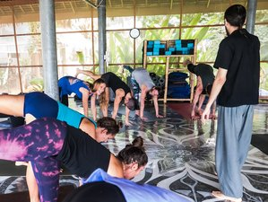 12 Days 50-Hour Yoga Teacher Training in Thailand