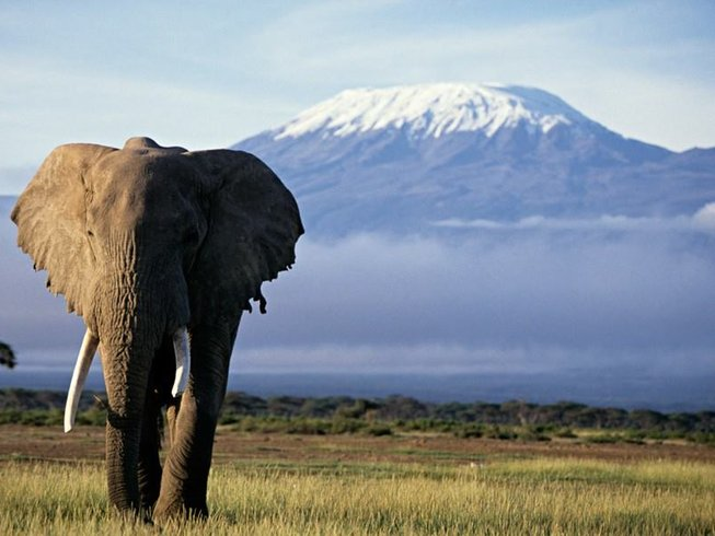 3 Days Tsavo East and Amboseli Safari