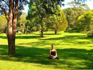 7 Days Power Living Yoga Retreat  in Bali