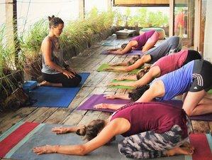4 jours en stage de hatha yoga et yoga tantrique dans le Kabupaten de Karangasem, Bali