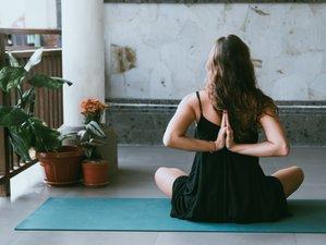 3-Daagse Inspirerende Hatha, Flow, Yin Yoga Retraite op de Veluwe, Nederland