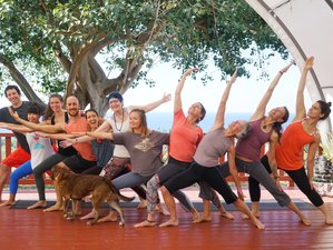 16 Day 200-Hour Yoga Alliance Yoga Teacher Training Immersion in Big Island, Hawaii