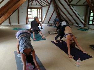 16 Tage 200-Stunden Tantra und Vinyasa Yogalehrer Ausbildung in Cancun, Quintana Roo