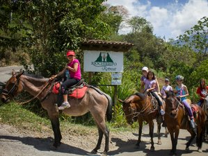4 Days Deluxe Yoga and Horse Riding in Costa Rica