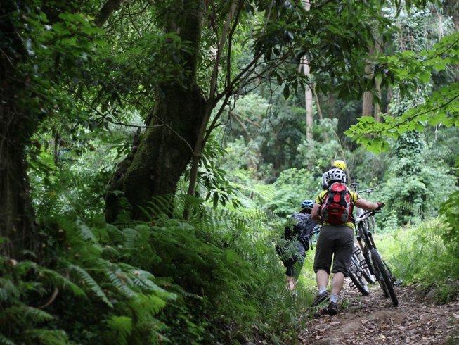 5 días retiros económicos de yoga y ciclismo de montaña en Colares, Portugal