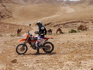 10 Day Interesting Adventure and Immersive Culture Guided Motorbike Tour in Israel