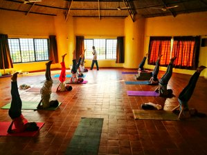 28-Day 200-hr Hatha Yoga Teacher Training near Goa, Western Ghats, India | Yoga Alliance Certified