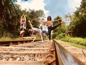 8 Days Fairtrade Wellness & Cultural Yoga Retreat in Hiriketiya Sri Lanka