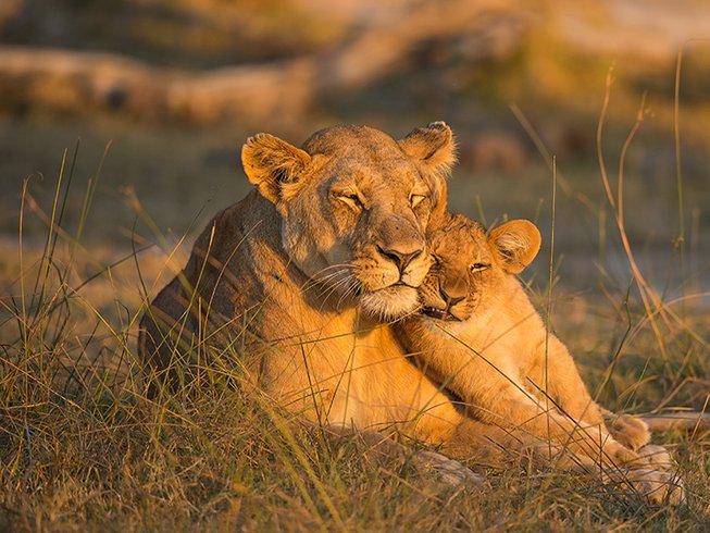 9 Days Birding Kenya Safari