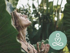 6 Restorative Mind and Body Online Healing Sessions