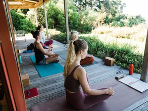29 Day 200hr Awakening Arts Yoga Teacher Training in Golden Bay, New Zealand