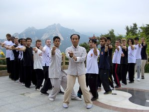 1 Month Traditional Shaolin Kung Fu Training in Kunyu Mountain ,Shandong, China