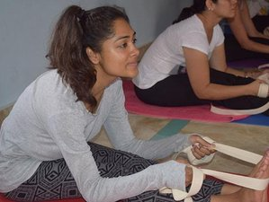 40 Days 300-Hour Yoga Therapy Teacher Training Course in Goa, India