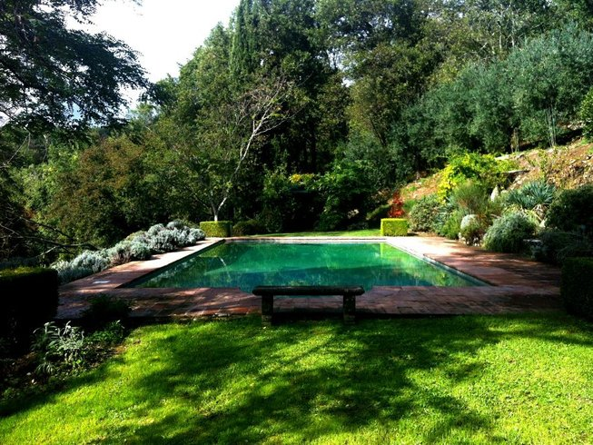 8 Days Olive Harvest and Yoga Retreat in Tuscany, Italy