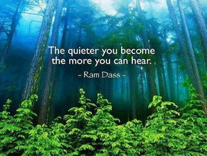 3 Day Rejuvenate and Renew Your Spirit with Online Mindfulness Retreat via Zoom