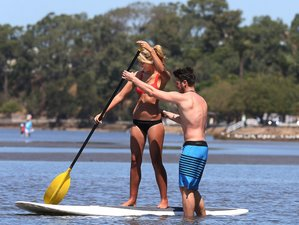 7 Tage Belebendes SUP Surf Camp in Brisbane, Queensland