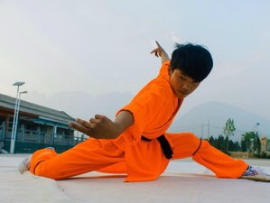 90 Days Traditional Shaolin Kung Fu Training in Denfeng, China