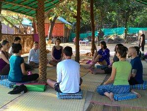 29 Days 200-Hour Hatha Vinyasa Yoga Teacher Training on Arabian Sea in Goa, India
