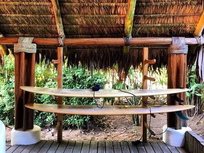 8 Days Surf and Yoga Retreat in Osa Peninsula, Costa Rica