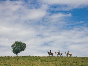 6 Days Horse Riding Holiday in Transylvania, Romania