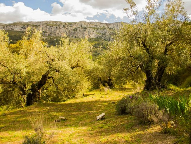 6 Days Yoga and Walking Retreat in Valencia, Spain