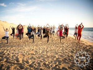 6 jours en stage de yoga & anatomie devant l'Océan à Saint Jean de Luz, Pays Basque