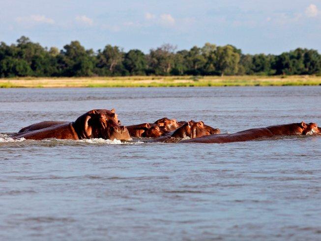4 Days Island Canoe Trail Safari in Zambezi, Zambia
