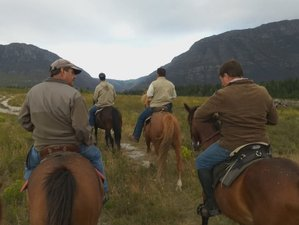 6 Days Sleeping Beauty Mountain Explorer Horse Riding Holiday in Riversdale, South Africa