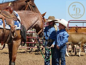 2 Days Ranch Hand Experience Package in Navasota, Texas
