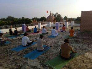 15 Tage Yoga Reise über Weihnachten und Silvester