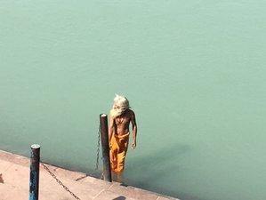8 Day Yoga Retreat in Nature in Rishikesh