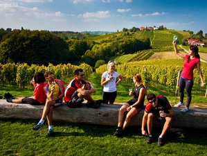 8 Days Slovenia Wine Tours