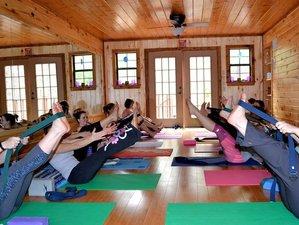 3 días de aprender a meditar y retiro de yoga en Florida, EUA