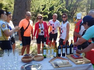 9 Days Sports Adventure Trail to Table Food and Wine Tour in Chile