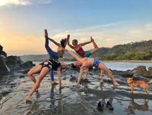 21 Day 200 Hours Yoga Teacher Training in Malpais, Puntarenas