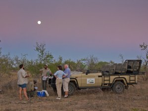 5 Days Luxury Panorama Route Tour and Honeymoon Safari in Kruger National Park, South Africa