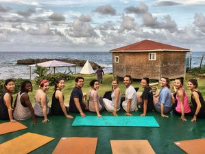 7 Day Go Natural Budget All Inclusive Yoga and Meditation Holiday in Tropical Paradise, Long Bay