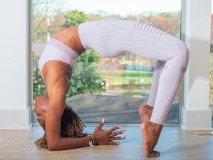 Self-Paced 200-Hour Online Yoga Teacher Training Course with Koya Webb