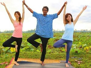 4 Day Short Break Mindfulness, Meditation, and Yoga Holiday in Siem Reap