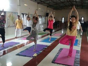 7-Daagse Detox, Meditatie en Yoga Retraite in Kerala, India