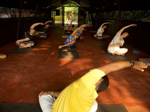 4 Day Becoming One Meditation and Yoga Retreat in Kerala