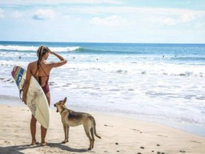 7 Days Fun and Surf Camp in Nicaragua