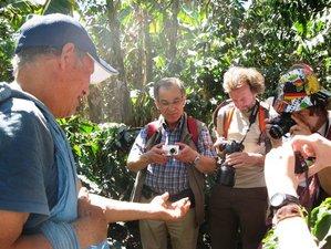2 Days Huayopata Coffee Plantation Tour and Machu Picchu Visit in Peru