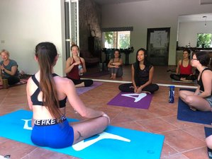 16 Day 200-Hour Tantra  & Vinyasa Yoga Teacher Training in Cancun, Quintana Roo